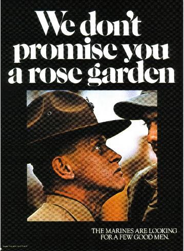 rosegarden25vn