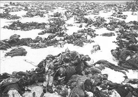 http://padresteve.files.wordpress.com/2010/01/hungarian-dead-stalingrad.jpg