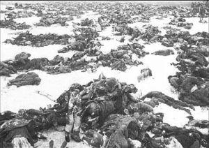 hungarian dead stalingrad