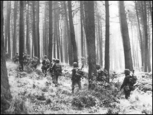 hurtgen-forest-soldiers