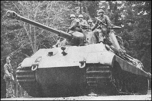 tiger2_in_action-bulge