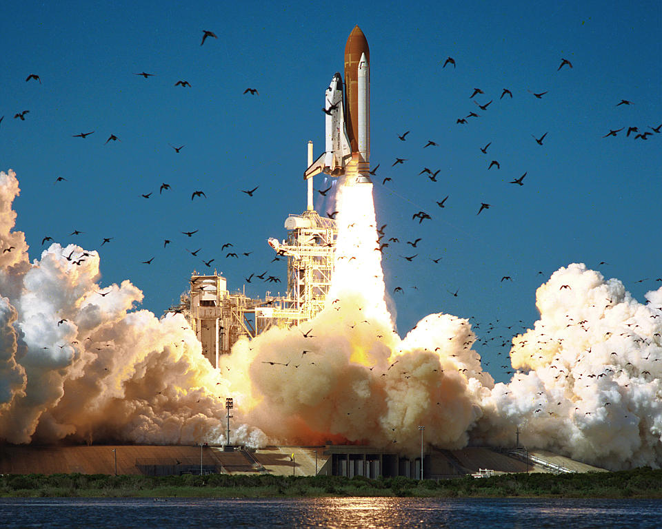 space shuttle challenger management - photo #5