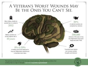 20131108-ArlingtonVA-MilitaryInforgraphic