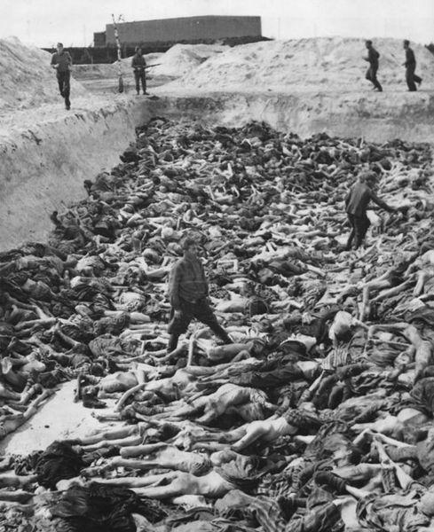 489px-Mass_Grave_3_at_Bergen-Belsen_concentration_camp