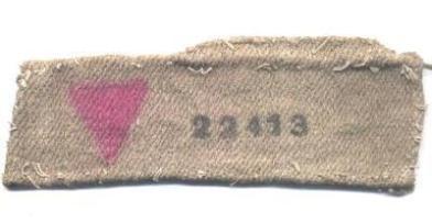 pink-triangle-armband