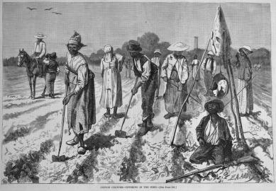 slaves-picking-planting-cotton
