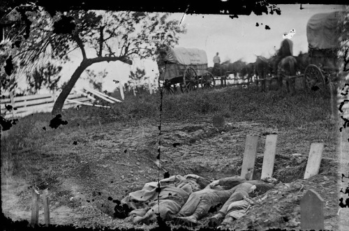 00844v-lc_confederate-graves-on-rose-farm_detail